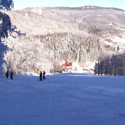 Skiing 02