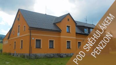 Penzion Pod Sněhulákem - Jeseníky, Lipová-lázně
